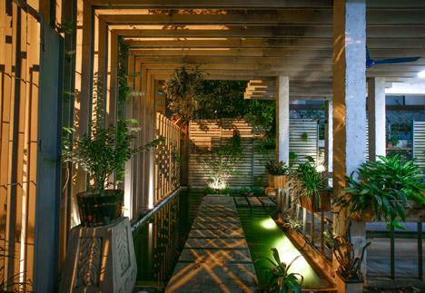 Необычное озеленение офисов Growing-Green-Office_102-Studio