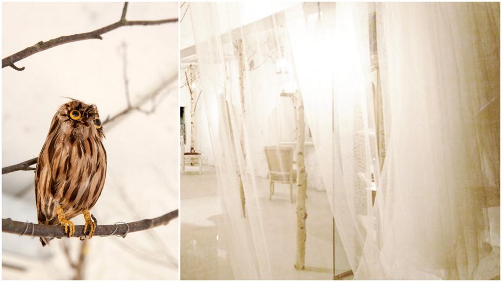 birch interiors-001